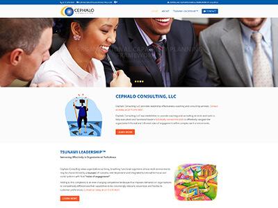 cephaloconsulting.com